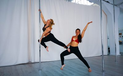 Floorwork & Pole Choreo Workshop 27.07.2019